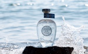 Rosemullion Distillery Cornish Gin